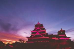 熊本城ピンクライトアップ